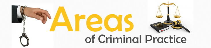 Areas of Criminal Practice